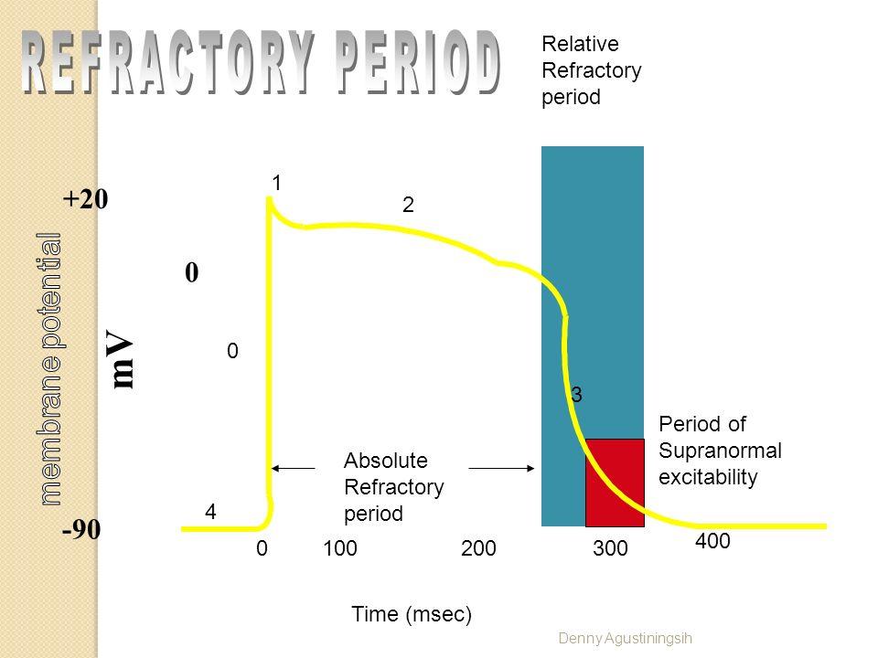 Mechanism of Cardiac Muscle Excitation, Contraction & Relaxation Denny Agustiningsih Kalsium yg menginduksi pelepasan kalsium Hanya mengetuk pintu Pen