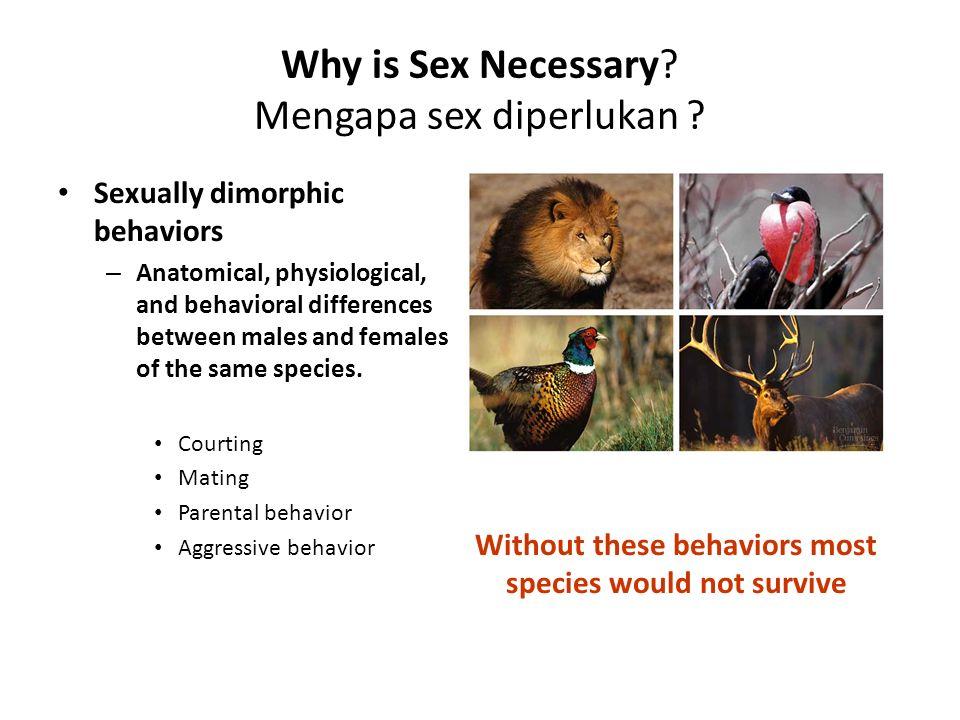 Is Sexual Identity Learned.Apakah ciri2 sex dipelajari.