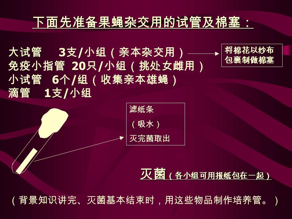 类型 特征 野生型 ( + ) 黑檀体 ( e ) 残翅 (vg) 白眼 ( w ) 小翅 (m) 卷刚毛 ( sn³ ) 黄体 ( y ) 棒眼 ( B ) 体色 眼色 翅形 眼形 刚毛 形态 填表: