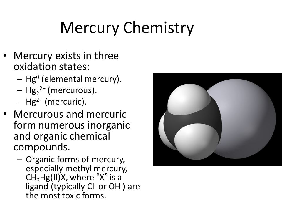 Mercury Chemistry Mercury exists in three oxidation states: – Hg 0 (elemental mercury). – Hg 2 2+ (mercurous). – Hg 2+ (mercuric). Mercurous and mercu