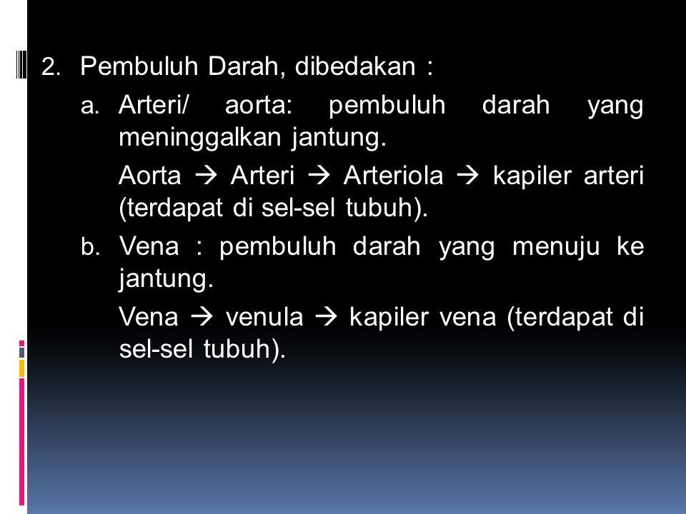 2. Pembuluh Darah, dibedakan : a. Arteri/ aorta: pembuluh darah yang meninggalkan jantung. Aorta  Arteri  Arteriola  kapiler arteri (terdapat di se