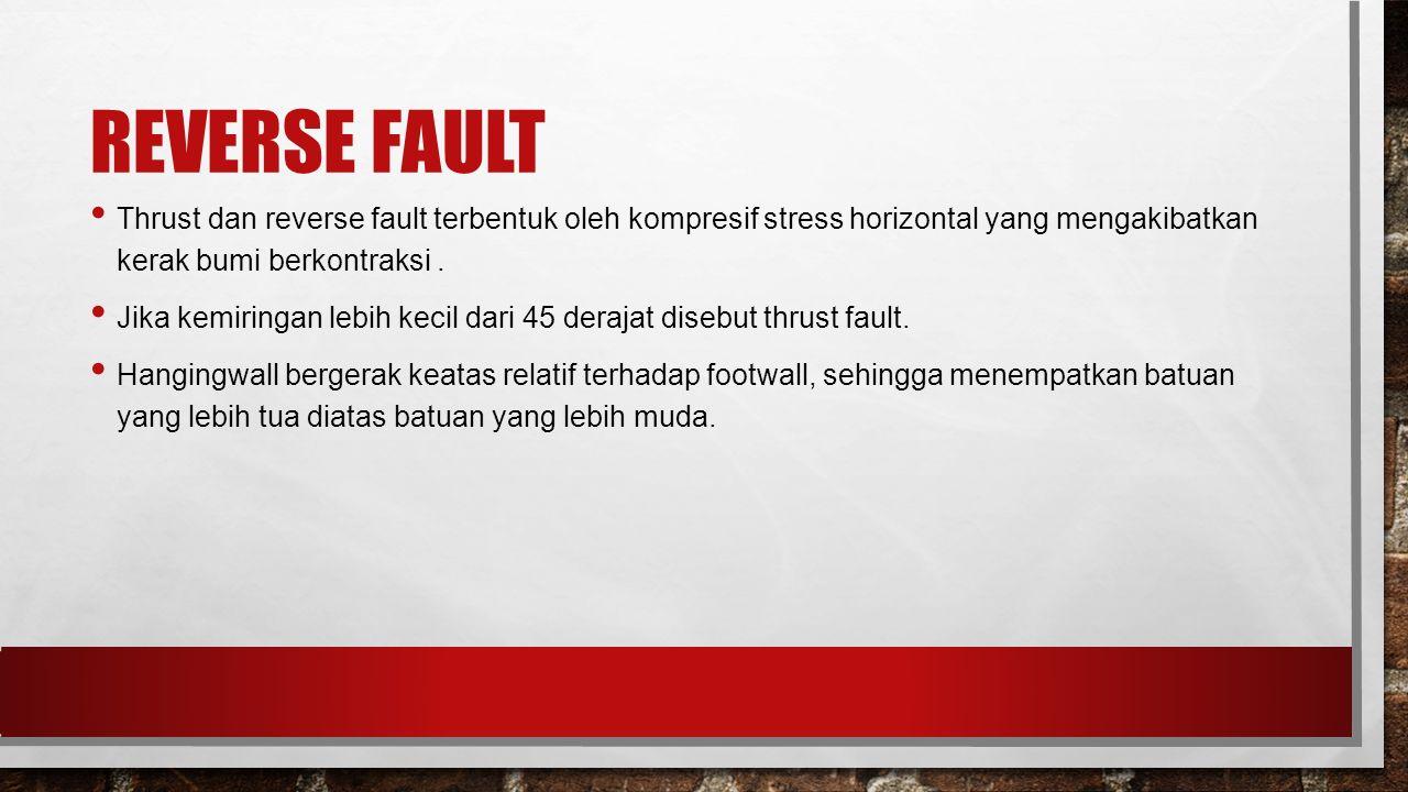 REVERSE FAULT Thrust dan reverse fault terbentuk oleh kompresif stress horizontal yang mengakibatkan kerak bumi berkontraksi. Jika kemiringan lebih ke