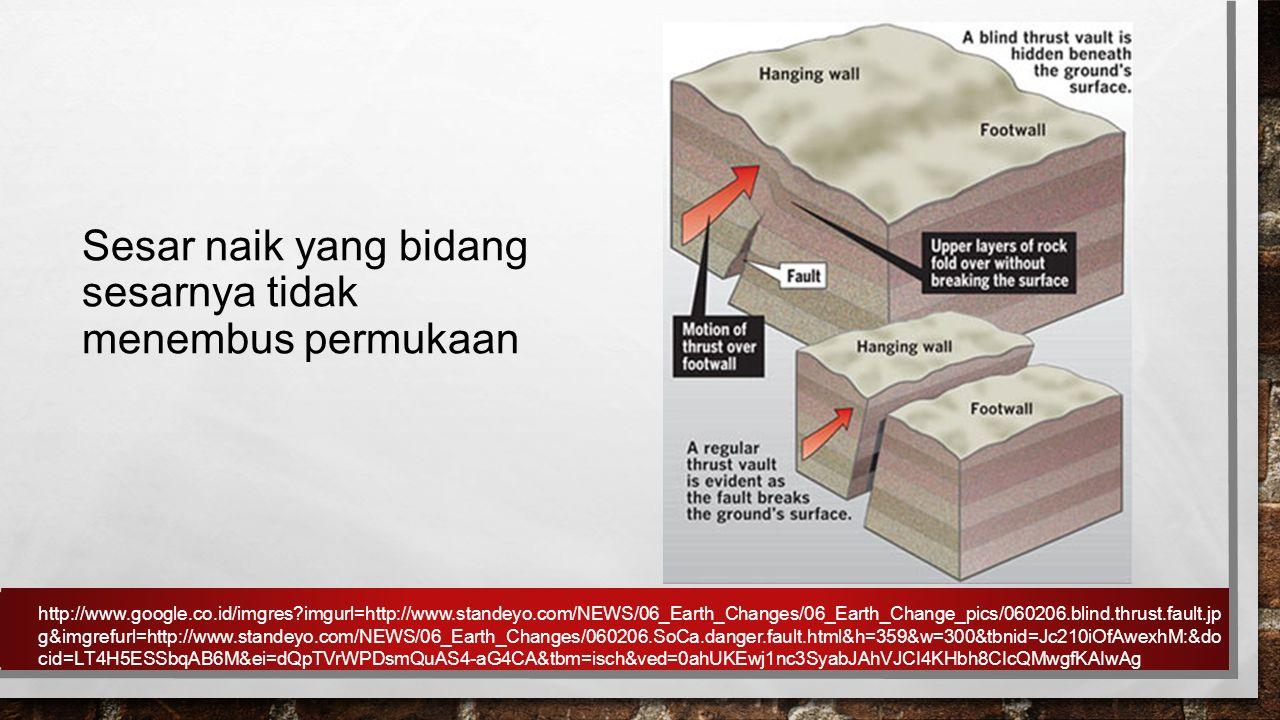 Sesar naik yang bidang sesarnya tidak menembus permukaan http://www.google.co.id/imgres?imgurl=http://www.standeyo.com/NEWS/06_Earth_Changes/06_Earth_