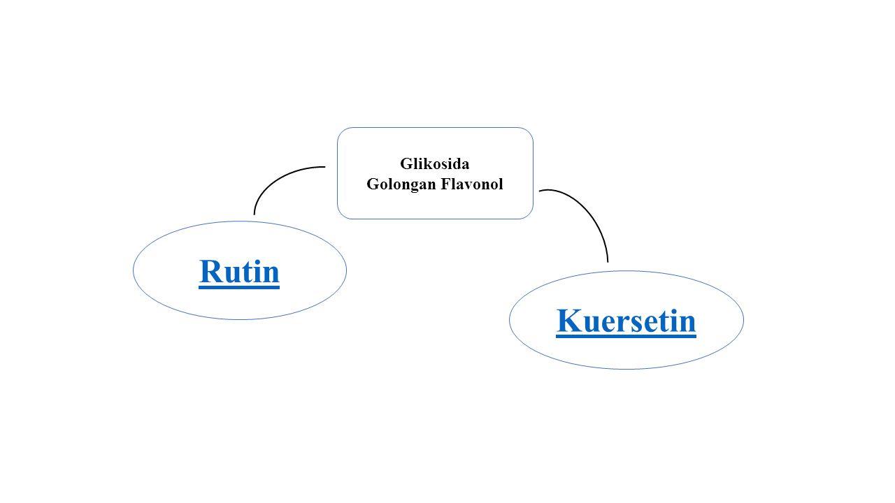 Rutin Glikosida Golongan Flavonol Kuersetin