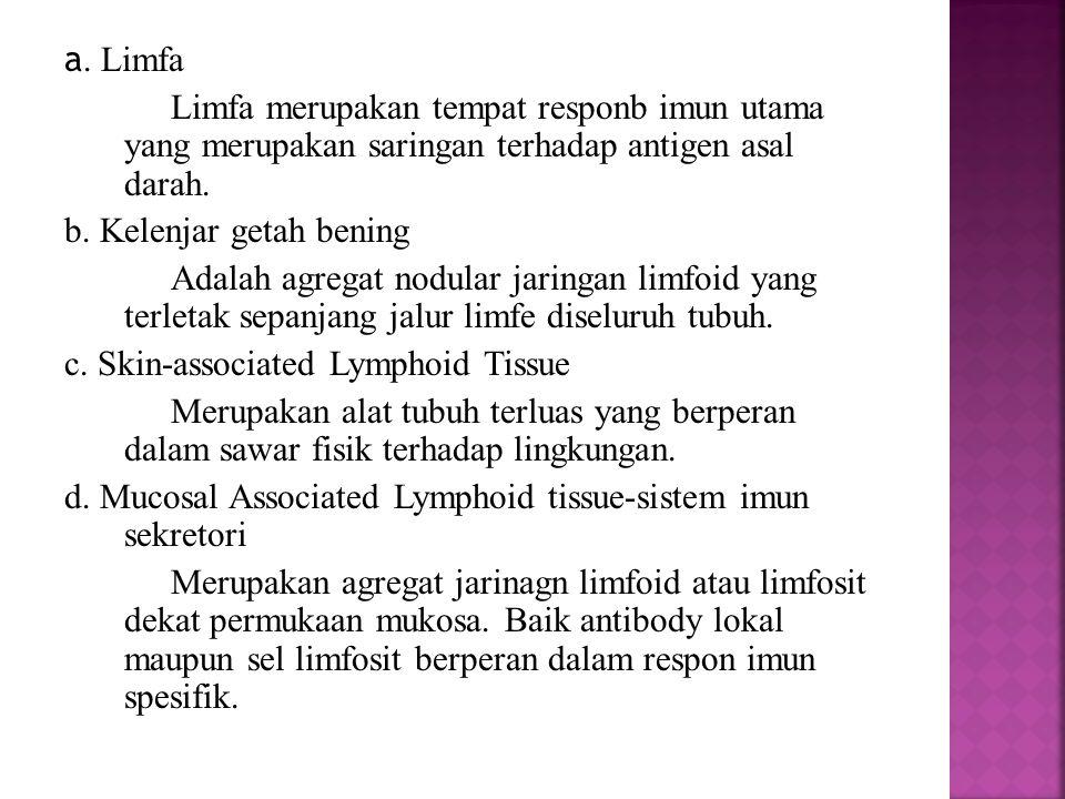 a. Limfa Limfa merupakan tempat responb imun utama yang merupakan saringan terhadap antigen asal darah. b. Kelenjar getah bening Adalah agregat nodula