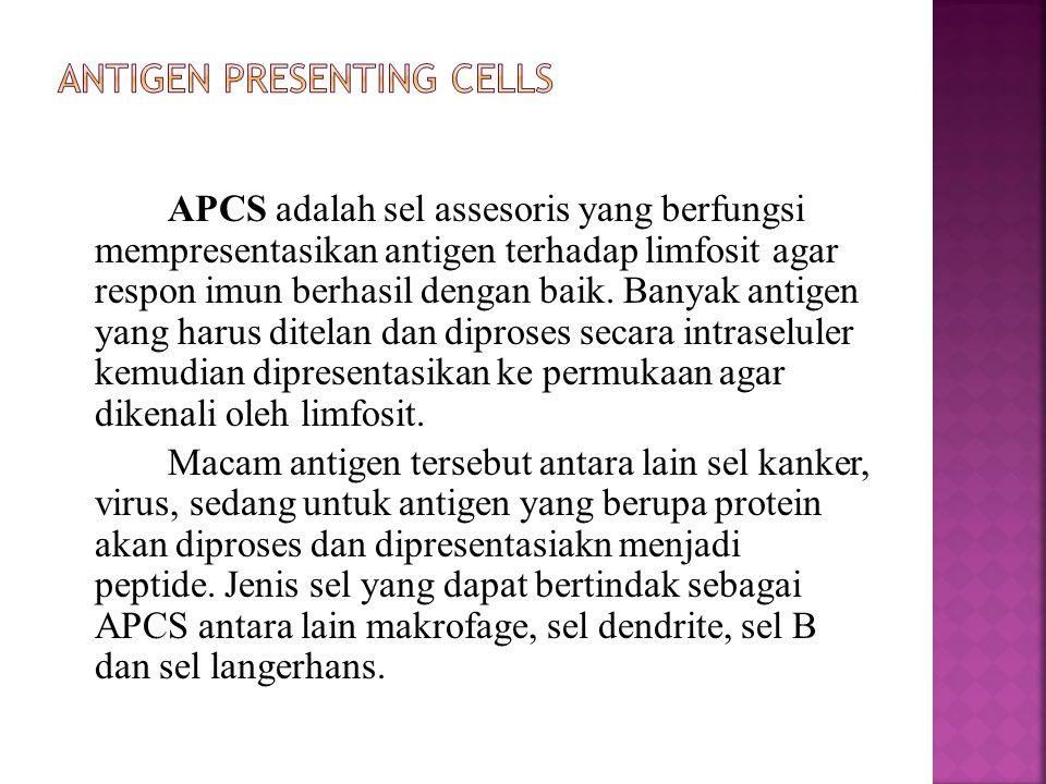 APCS adalah sel assesoris yang berfungsi mempresentasikan antigen terhadap limfosit agar respon imun berhasil dengan baik. Banyak antigen yang harus d