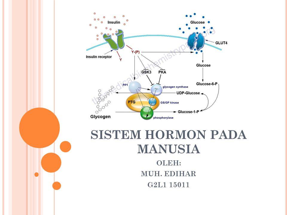 SISTEM HORMON PADA MANUSIA OLEH: MUH. EDIHAR G2L1 15011