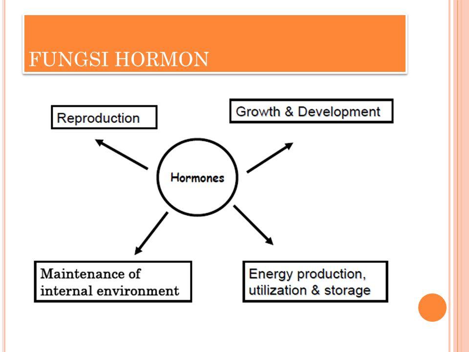 FUNGSI HORMON