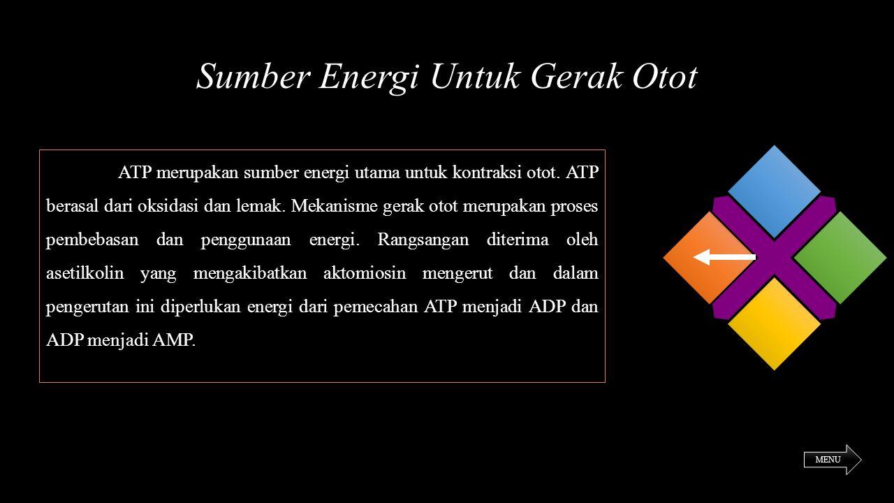 Sumber Energi Untuk Gerak Otot ATP merupakan sumber energi utama untuk kontraksi otot. ATP berasal dari oksidasi dan lemak. Mekanisme gerak otot merup