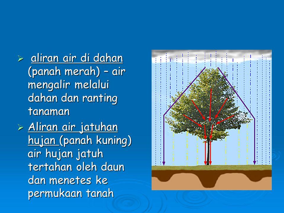 Presipitasi / Hujan  Precipitasi adalah hujan (proses turunnya air dari awan ke permukaan bumi), dan pada dareah beriklim subtropis, dapat berbentuk salju