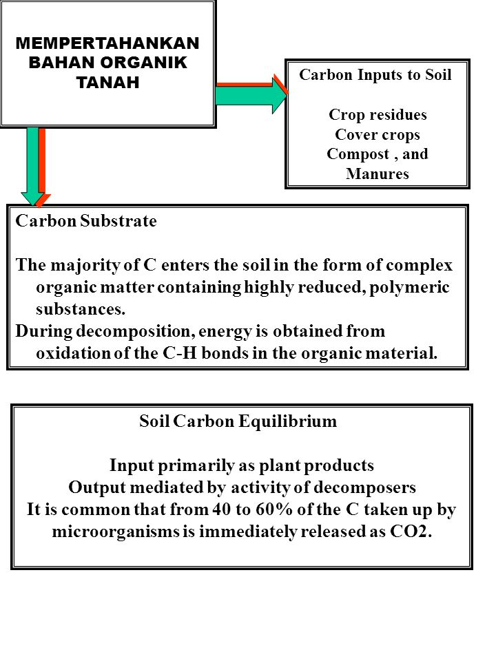 MEMPERTAHANKAN BAHAN ORGANIK TANAH Carbon Inputs to Soil Crop residues Cover crops Compost, and Manures Carbon Substrate The majority of C enters the soil in the form of complex organic matter containing highly reduced, polymeric substances.