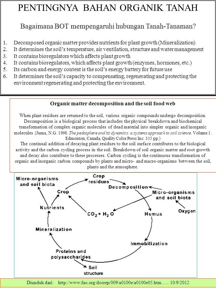 PENTINGNYA BAHAN ORGANIK TANAH Bagaimana BOT mempengaruhi hubungan Tanah-Tanaman.