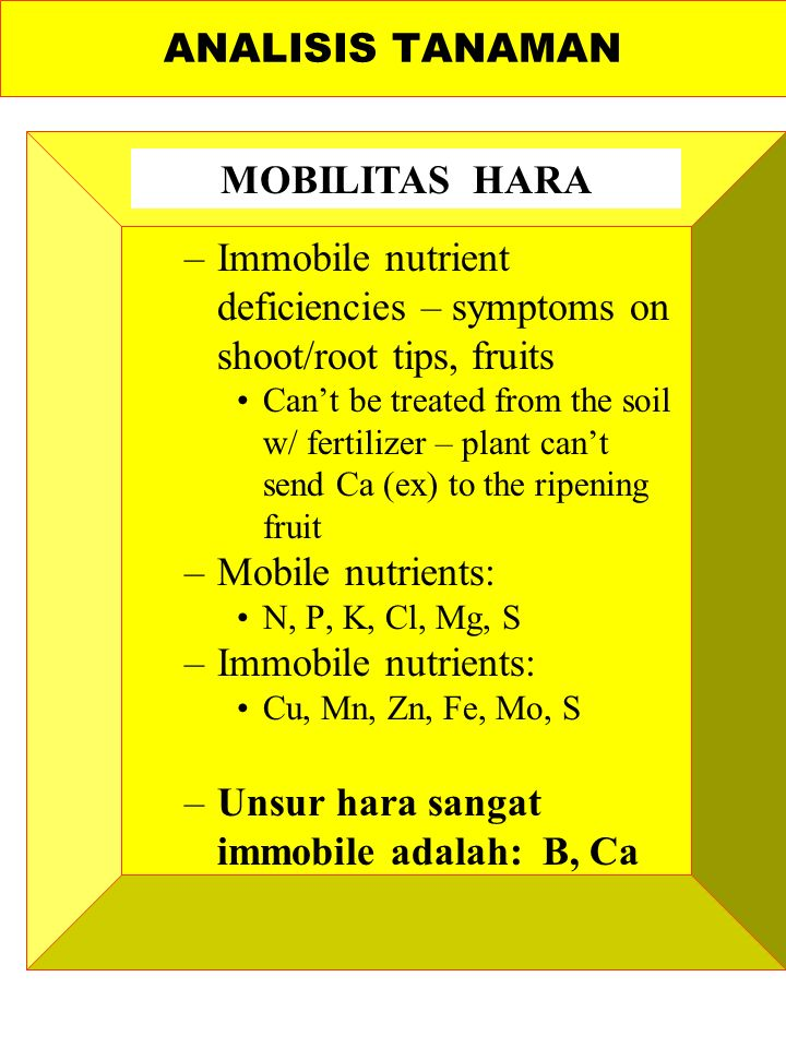 –Immobile nutrient deficiencies – symptoms on shoot/root tips, fruits Can't be treated from the soil w/ fertilizer – plant can't send Ca (ex) to the ripening fruit –Mobile nutrients: N, P, K, Cl, Mg, S –Immobile nutrients: Cu, Mn, Zn, Fe, Mo, S –Unsur hara sangat immobile adalah: B, Ca ANALISIS TANAMAN MOBILITAS HARA