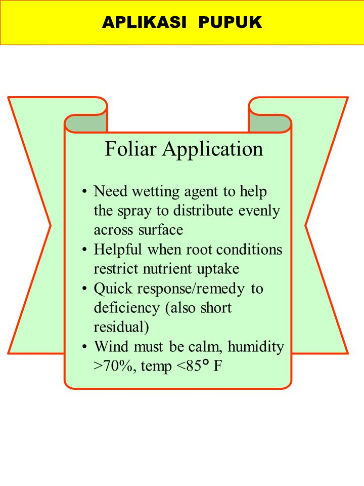 Foliar Application Need wetting agent to help the spray to distribute evenly across surface Helpful when root conditions restrict nutrient uptake Quick response/remedy to deficiency (also short residual) Wind must be calm, humidity >70%, temp <85° F APLIKASI PUPUK