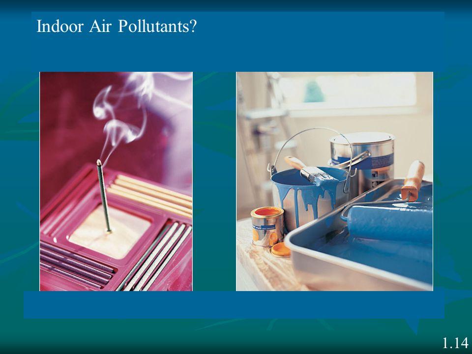 1.14 Indoor Air Pollutants?