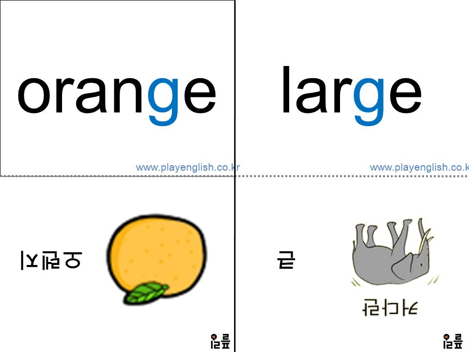 www.playenglish.co.kr orange 오렌지 large 큰