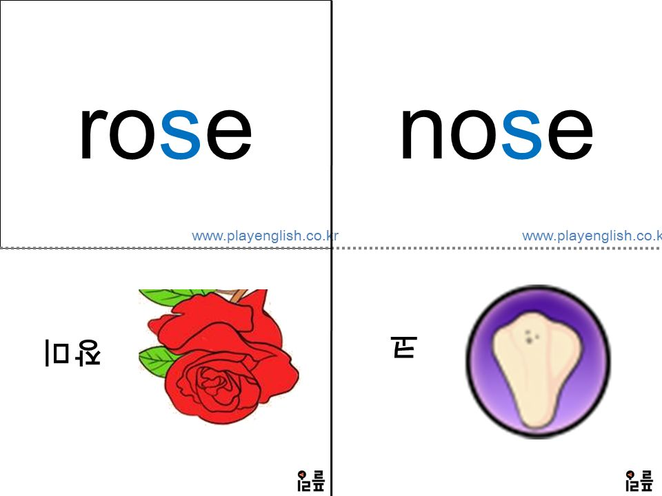 www.playenglish.co.kr rose 장미 nose 코