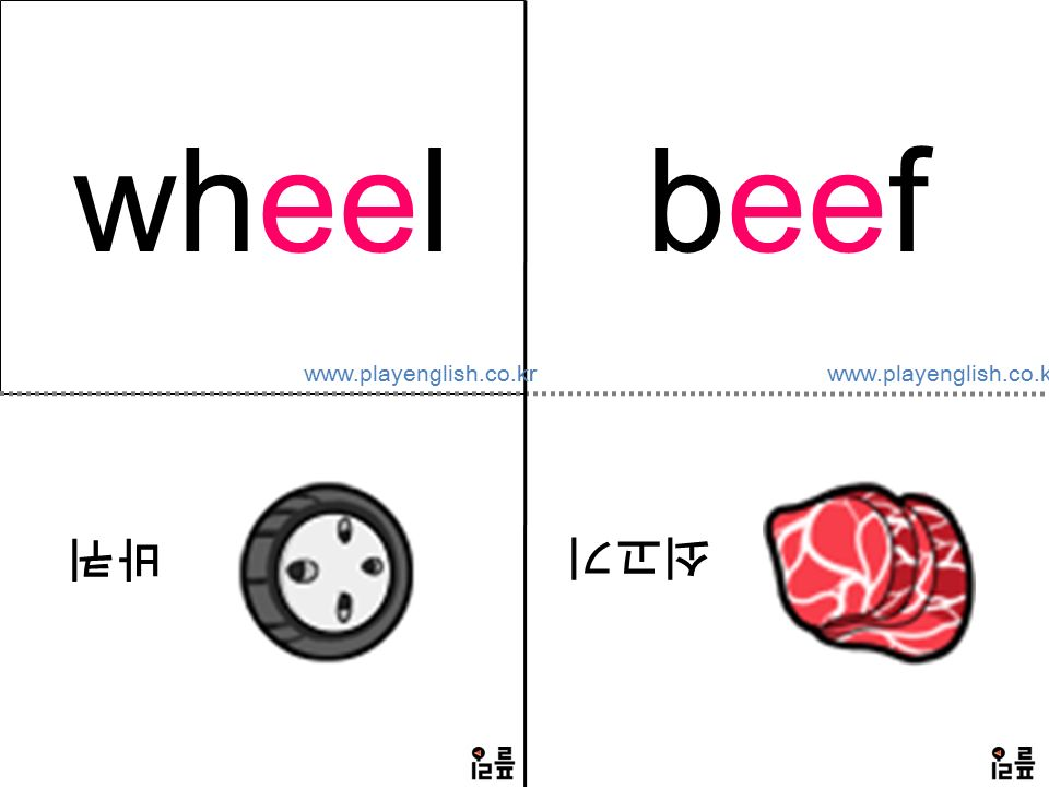 wheel 바퀴 beef 쇠고기 www.playenglish.co.kr