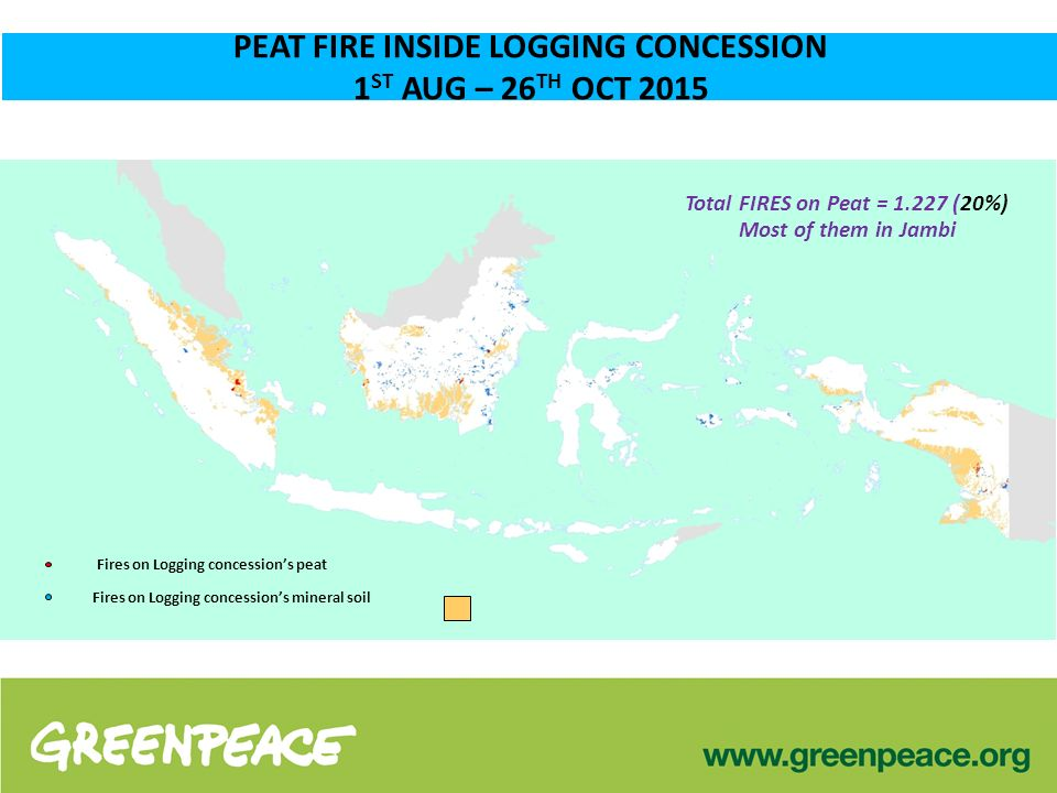 PEAT FIRE INSIDE LOGGING CONCESSION 1 ST AUG – 26 TH OCT 2015 Total FIRES on Peat = 1.227 (20%) Most of them in Jambi Fires on Logging concession's peat Fires on Logging concession's mineral soil