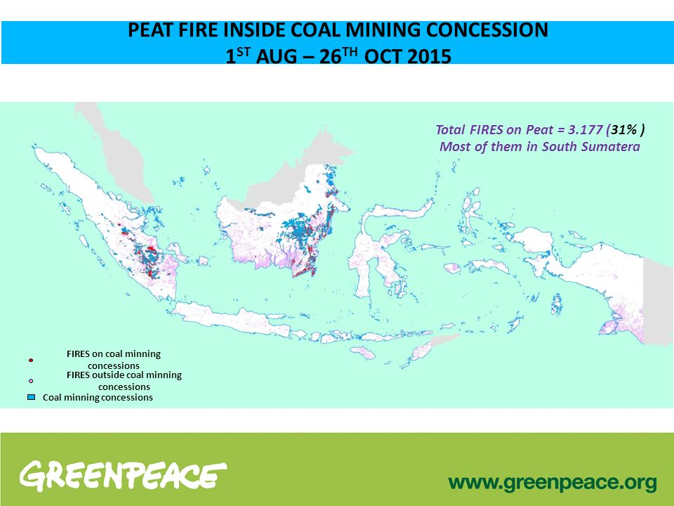 FIRES on coal minning concessions PEAT FIRE INSIDE COAL MINING CONCESSION 1 ST AUG – 26 TH OCT 2015 FIRES outside coal minning concessions Coal minning concessions Total FIRES on Peat = 3.177 (31% ) Most of them in South Sumatera
