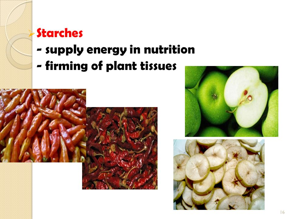  Starches - supply energy in nutrition - firming of plant tissues 16