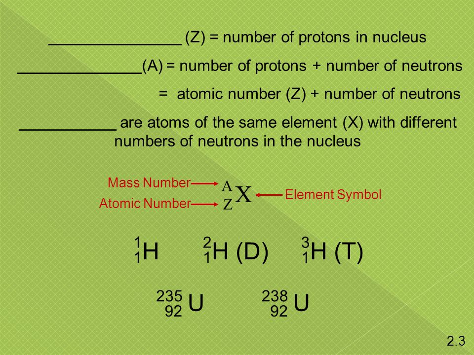 _______________ (Z) = number of protons in nucleus ______________(A) = number of protons + number of neutrons = atomic number (Z) + number of neutrons ___________ are atoms of the same element (X) with different numbers of neutrons in the nucleus X A Z H 1 1 H (D) 2 1 H (T) 3 1 U 235 92 U 238 92 Mass Number Atomic Number Element Symbol 2.3