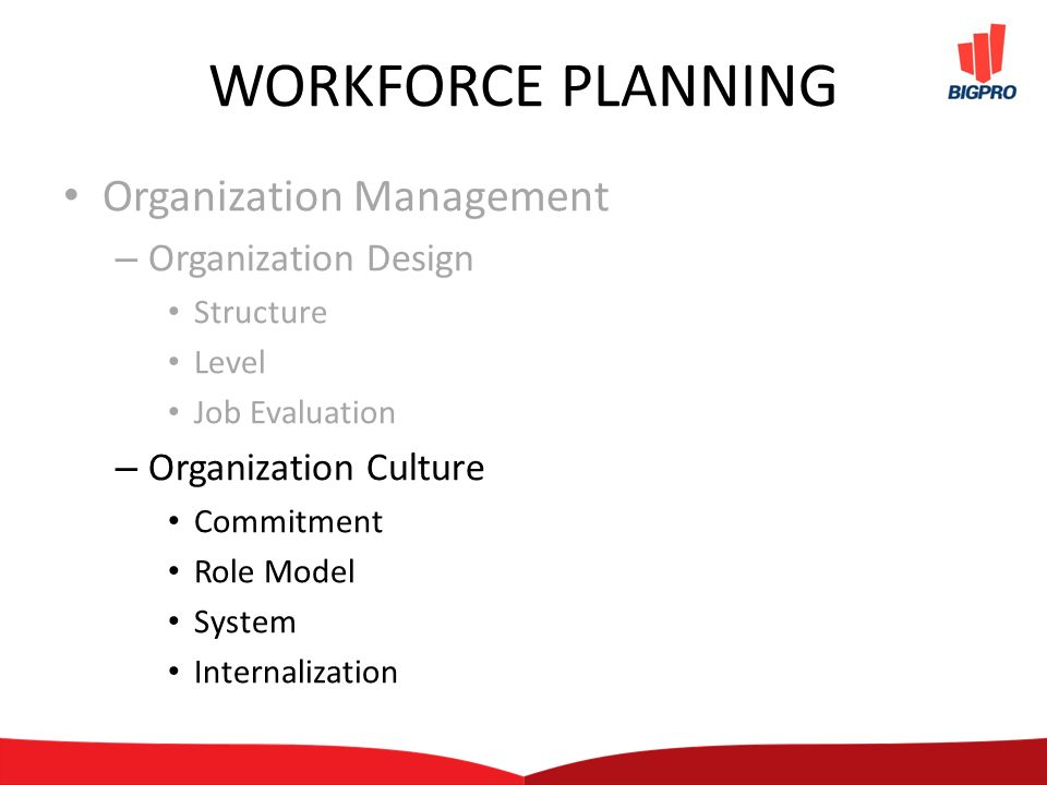 WORKFORCE PLANNING Organization Management – Organization Design Structure Level Job Evaluation – Organization Culture Commitment Role Model System Internalization