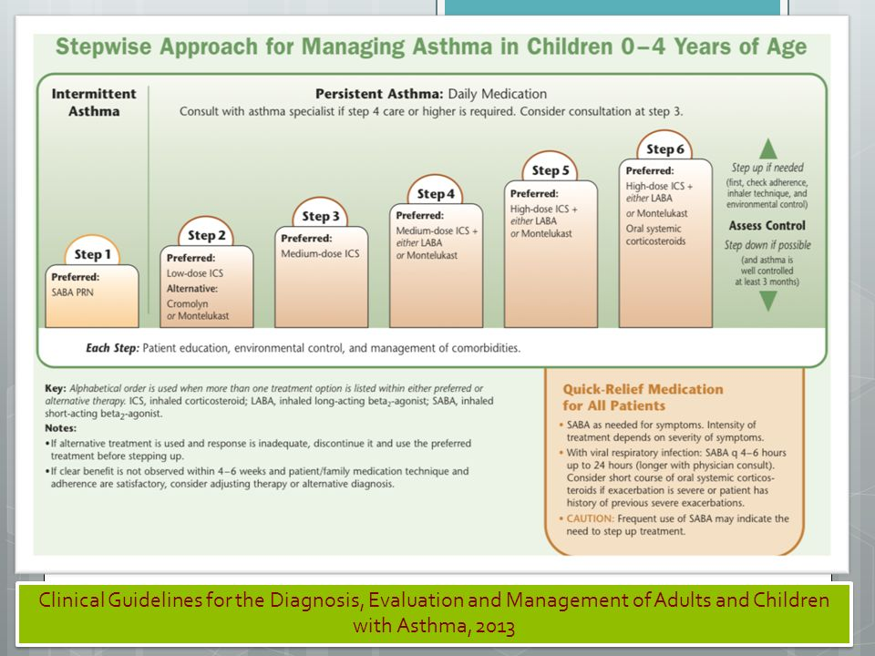 Clinical Guidelines for the Diagnosis, Evaluation and Management of Adults and Children with Asthma, 2013