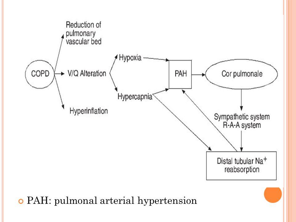 PAH: pulmonal arterial hypertension