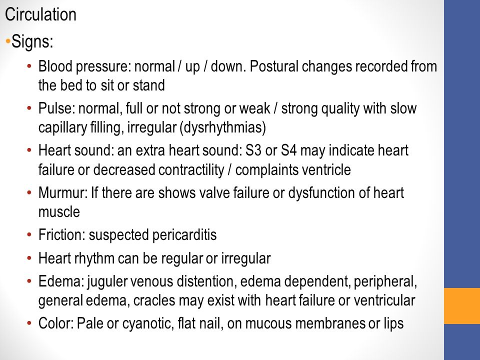 Circulation Signs: Blood pressure: normal / up / down.