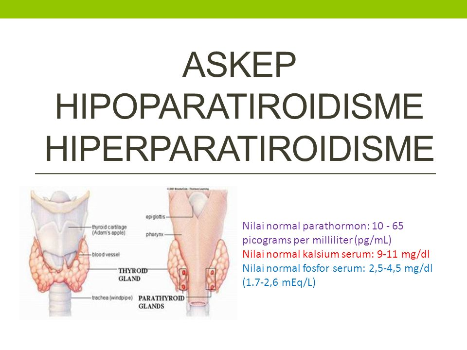 3) In providing care for a client being admitted for hyperparathyroidism, the nurse anticipates implementing which of the following aactions.