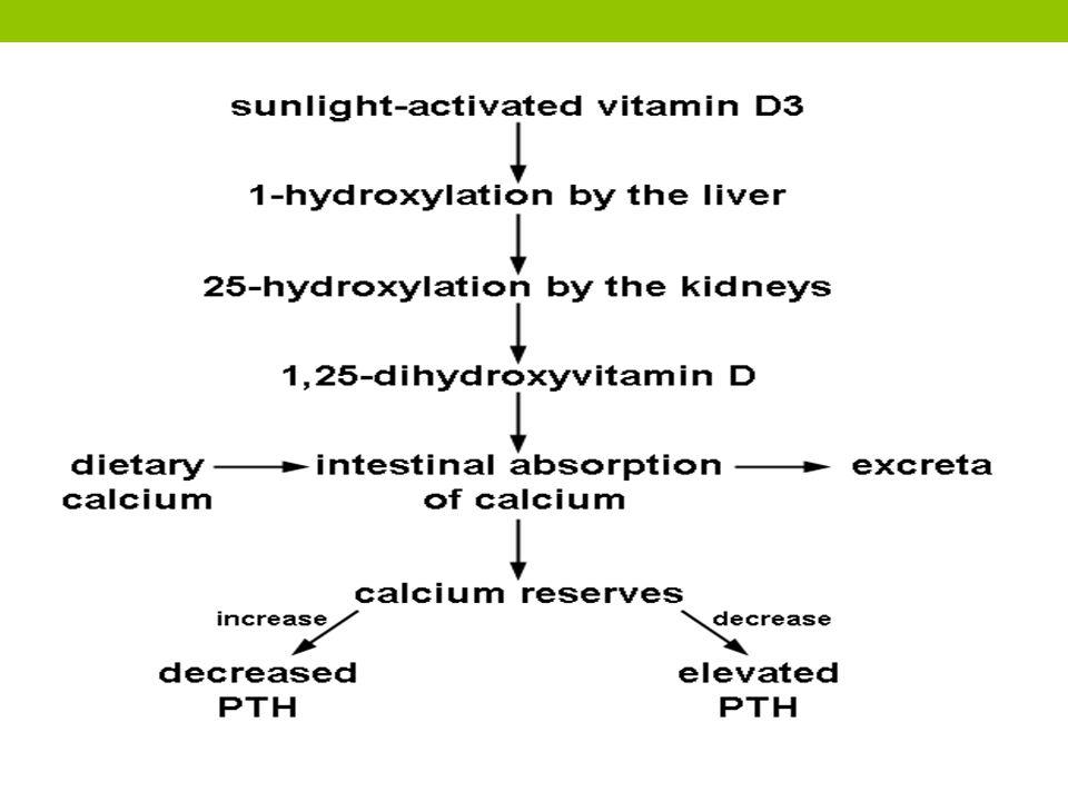 Penatalaksanaan Meningkatkan tingkat kalsium serum Pemberian kalsium glukonat intravena Obat penenang seperti pentobarbital mungkin diberikan Pengaturan lingkungan yang bebas dari kebisingan, cahaya terang, atau gerakan tiba-tiba.