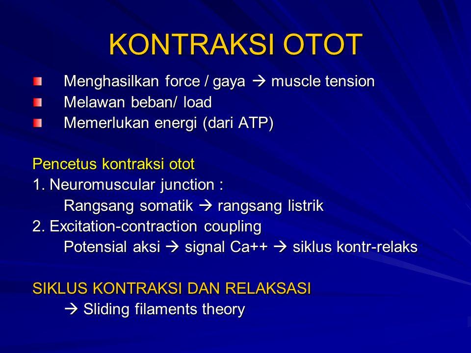 KONTRAKSI OTOT Menghasilkan force / gaya  muscle tension Melawan beban/ load Memerlukan energi (dari ATP) Pencetus kontraksi otot 1.