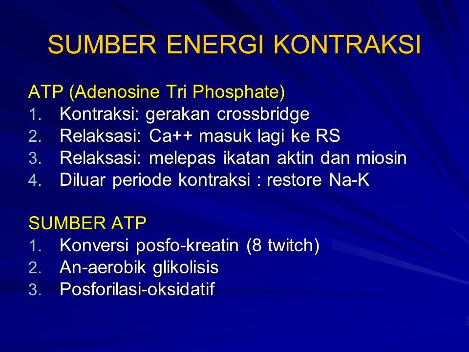 SUMBER ENERGI KONTRAKSI ATP (Adenosine Tri Phosphate) 1.