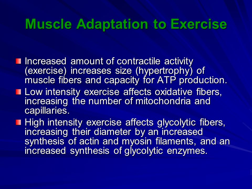 Muscle Adaptation to Exercise Increased amount of contractile activity (exercise) increases size (hypertrophy) of muscle fibers and capacity for ATP production.