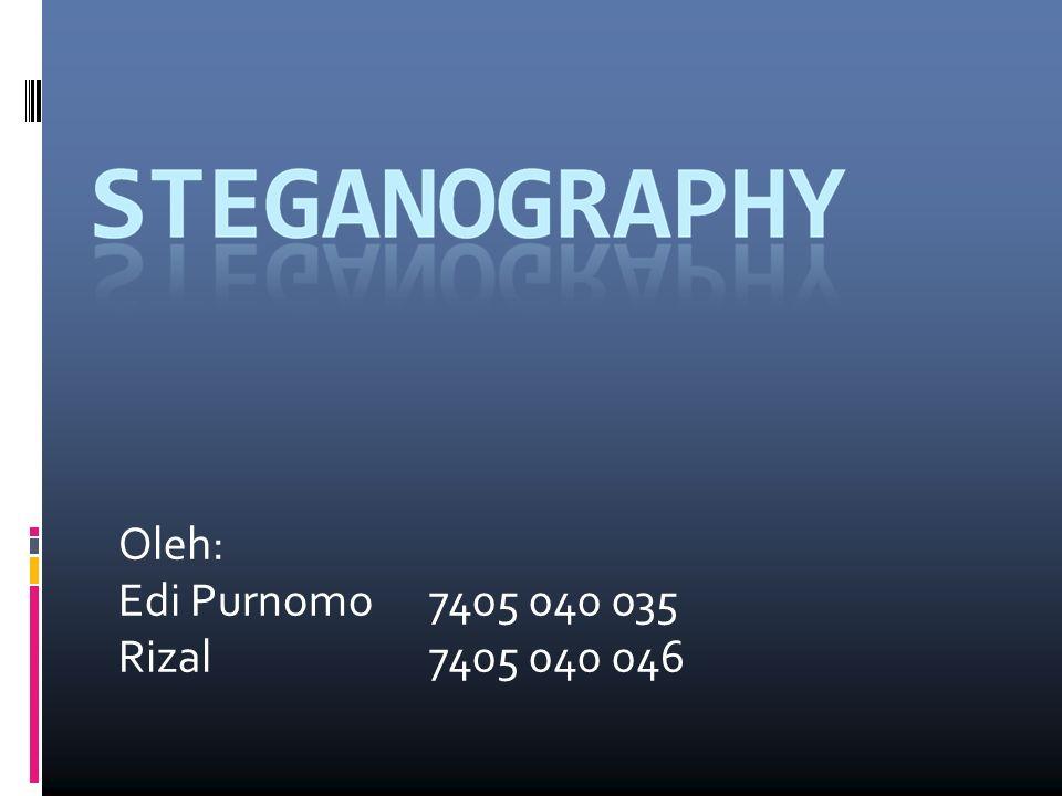 Program Steganography: puff v1.01  Program ini dapat melakukan proses steganography dengan baik.