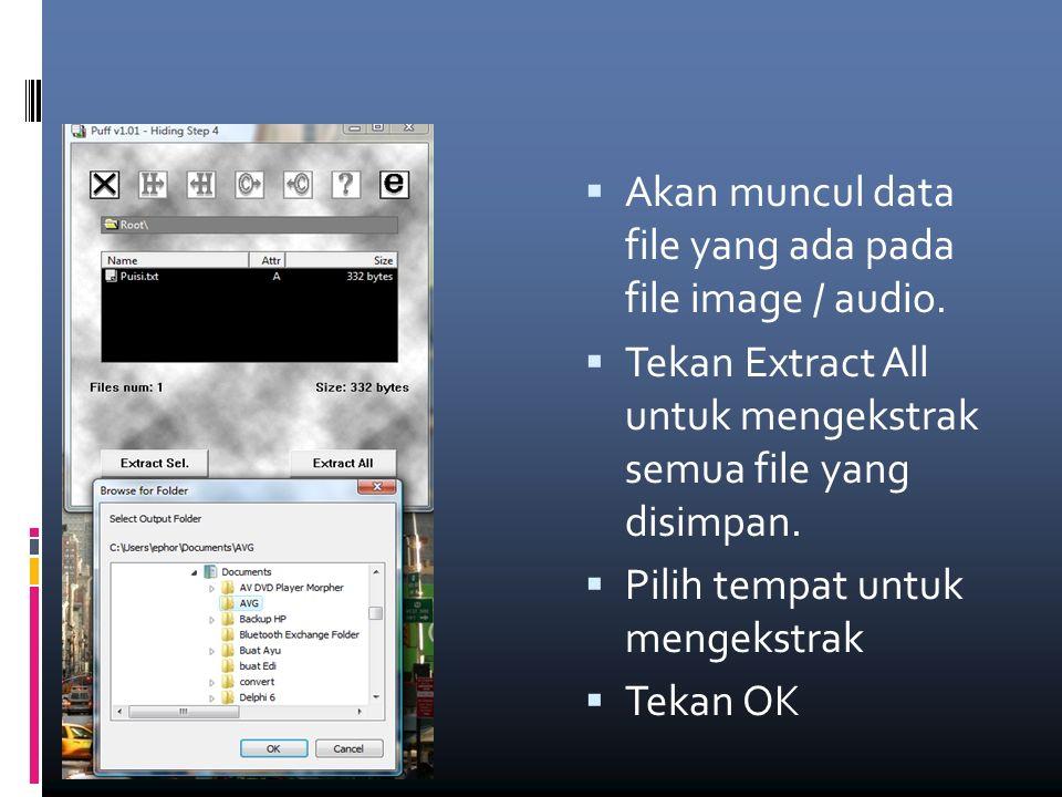  Akan muncul data file yang ada pada file image / audio.