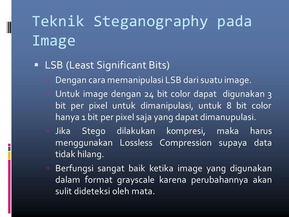 Teknik Steganography pada Image  Masking dan Filtering  Biasanya dibatasi pada image 24 bit color atau pada image grayscale.