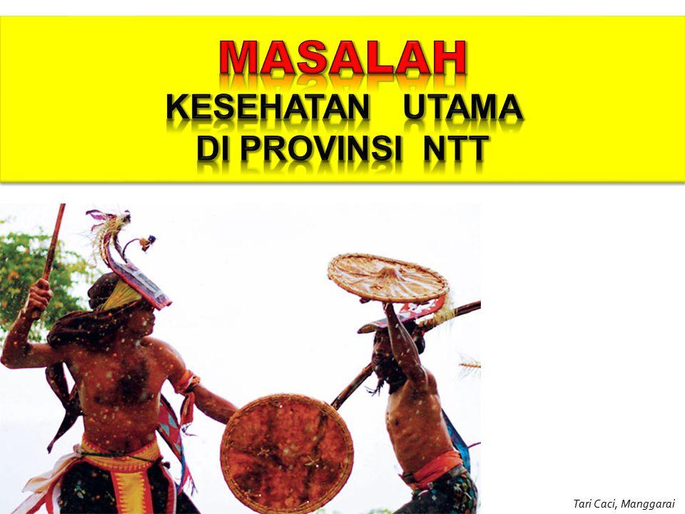 Economic loss sangat besar 1.Malaria 2.TBC 3.ISPA/ Pneumonia 4.Diare 5.DHF 6.HIV / AIDS 7.Rabies 8.Filaria Kadinkes NTT B.
