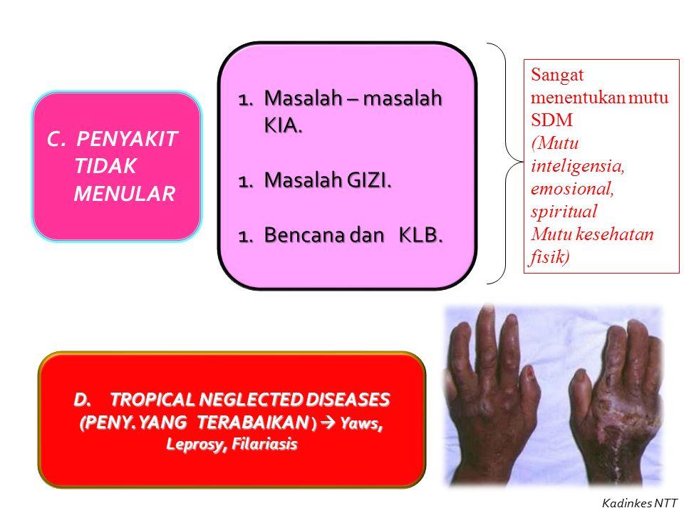 Sanitarian Sumber : DINKESROVINSI NTT _ BPSDMK 2014.