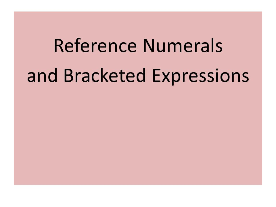 Reference Numerals and Bracketed Expressions