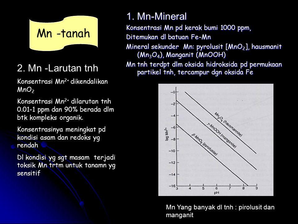 1. Mn-Mineral Konsentrasi Mn pd kerak bumi 1000 ppm, Ditemukan dl batuan Fe-Mn Mineral sekunder Mn: pyrolusit [MnO 2 ], hausmanit (Mn 3 O 4 ), Mangani