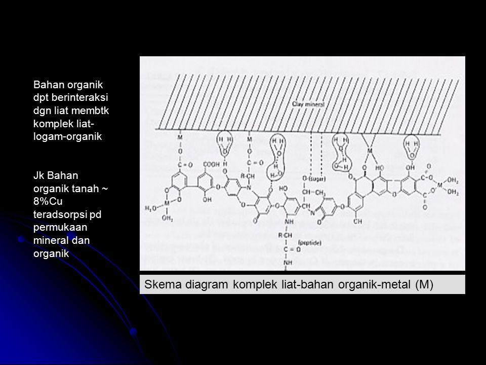 Bahan organik dpt berinteraksi dgn liat membtk komplek liat- logam-organik Jk Bahan organik tanah ~ 8%Cu teradsorpsi pd permukaan mineral dan organik