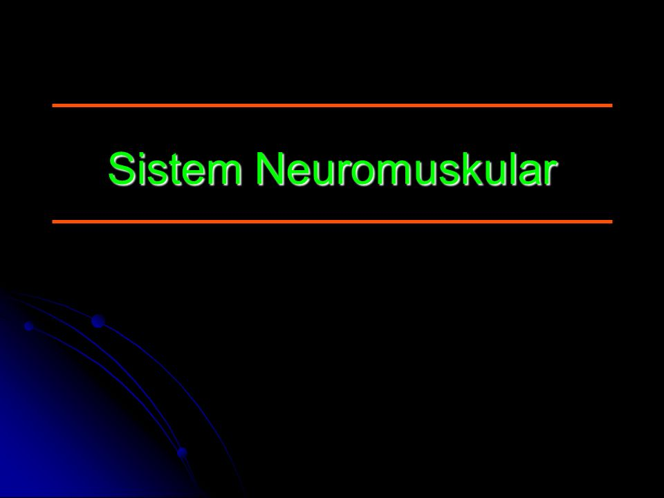 Sistem Neuromuskular