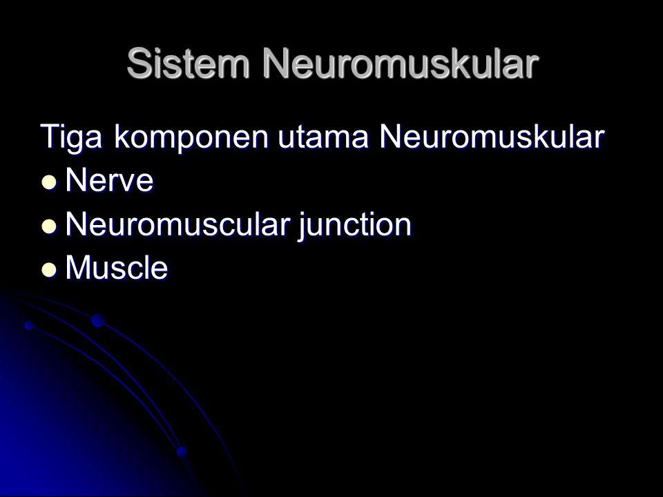 Tiga komponen utama Neuromuskular Nerve Nerve Neuromuscular junction Neuromuscular junction Muscle Muscle