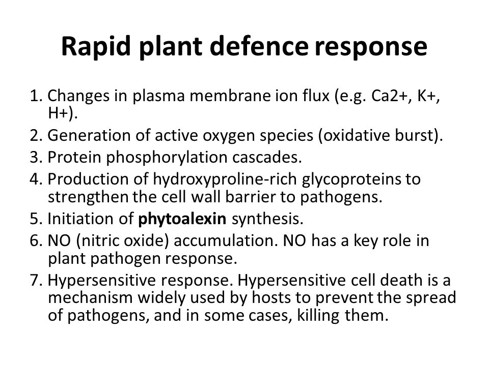 Rapid plant defence response 1.Changes in plasma membrane ion flux (e.g.