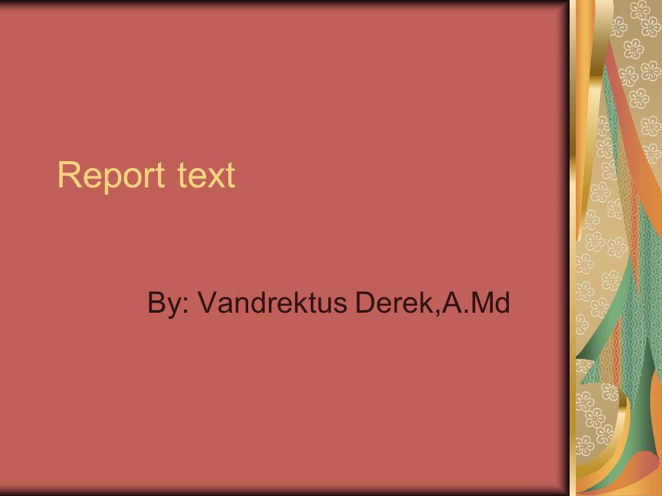 Report text By: Vandrektus Derek,A.Md