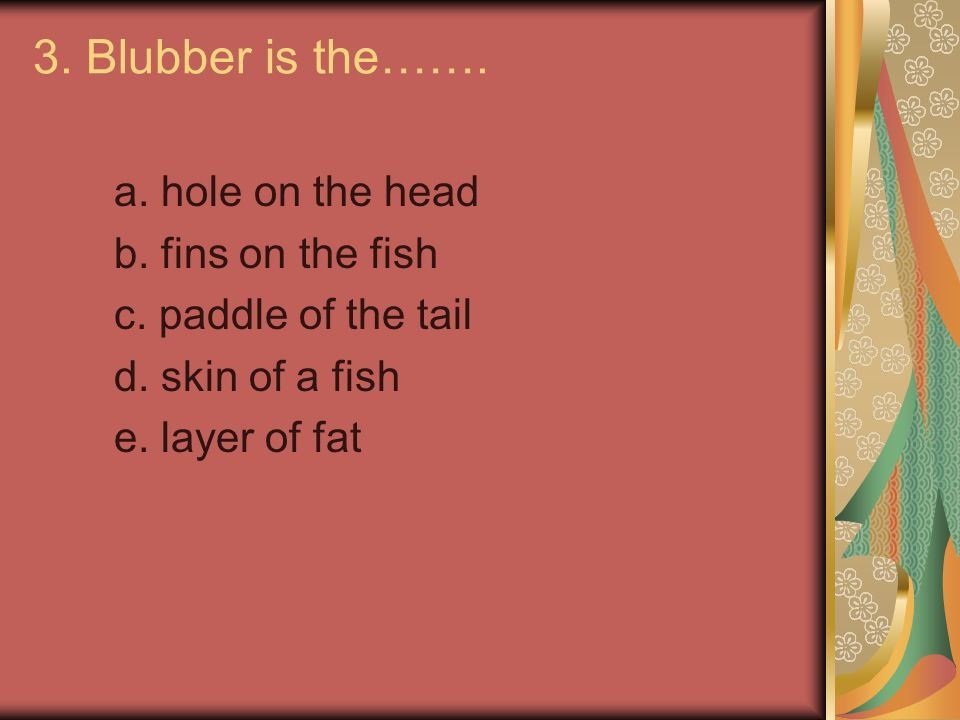 3.Blubber is the……. a. hole on the head b. fins on the fish c.