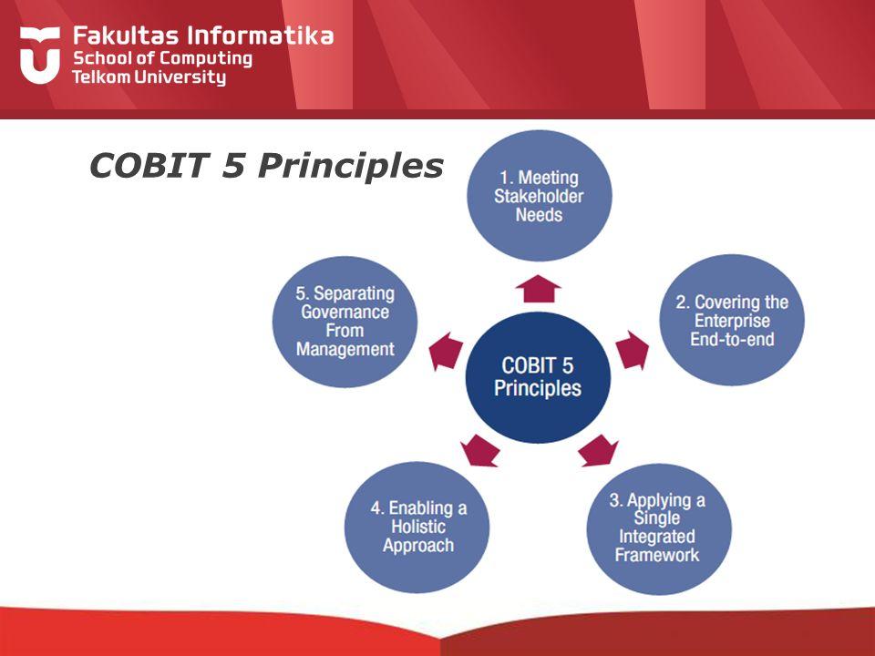 12-CRS-0106 REVISED 8 FEB 2013 COBIT 5 Principles