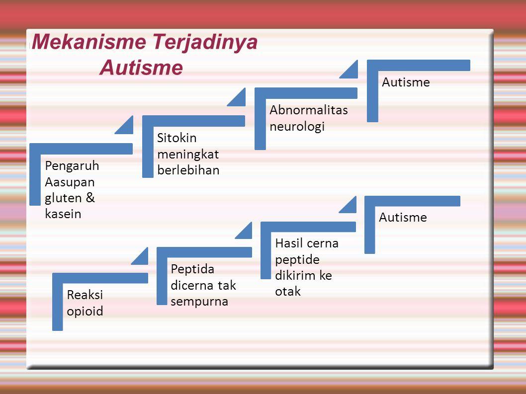 Mekanisme Terjadinya Autisme Pengaruh Aasupan gluten & kasein Sitokin meningkat berlebihan Abnormalitas neurologi Autisme Reaksi opioid Peptida dicern